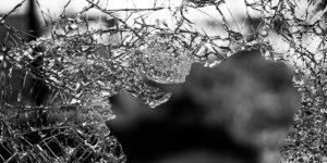 Schadensmeldung Online JW-Versicherungsmakler