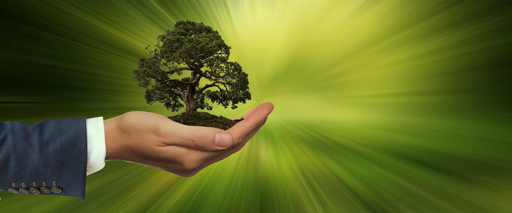 ESG Environment - Social - Governance